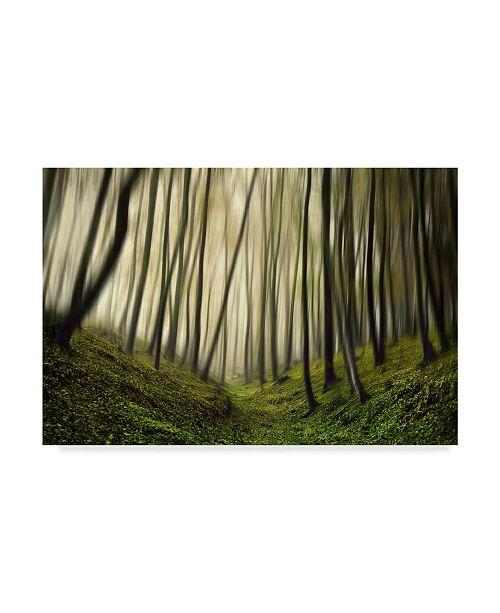 "Trademark Global Samanta Krivec 'Run Forest Run' Canvas Art - 32"" x 2"" x 22"""