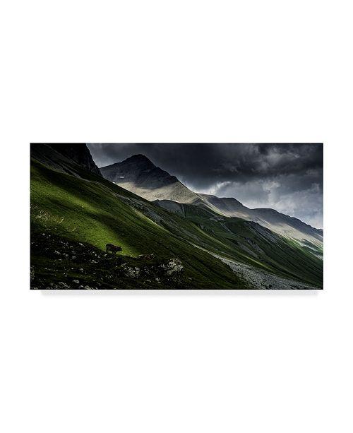 "Trademark Global Vito Guarino 'Albula Pass Switzerland' Canvas Art - 32"" x 2"" x 16"""