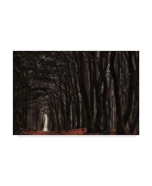 "Trademark Global Jan Paul Kraaij 'Darkness Come Alive' Canvas Art - 19"" x 2"" x 12"""