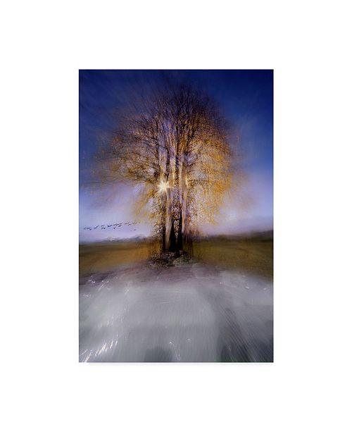 "Trademark Global Milan Malovrh 'Round Trees' Canvas Art - 12"" x 2"" x 19"""