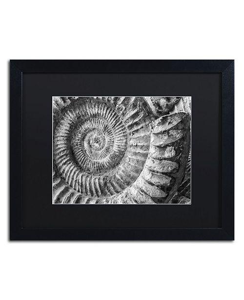 "Trademark Global Moises Levy 'Amonita 1' Matted Framed Art - 16"" x 20"" x 0.5"""