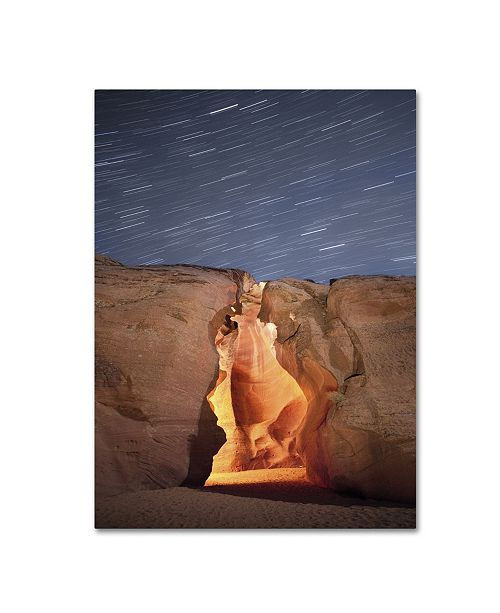 "Trademark Global Moises Levy 'Flame' Canvas Art - 47"" x 35"" x 2"""