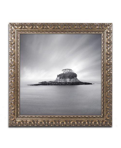 """Trademark Global Moises Levy 'Rat Island' Ornate Framed Art - 16"""" x 16"""" x 0.5"""""""