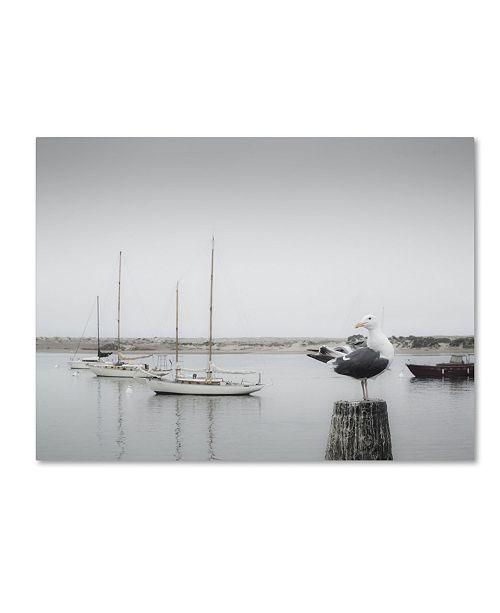 "Trademark Global Moises Levy 'Four Boats & Seagull' Canvas Art - 47"" x 35"" x 2"""