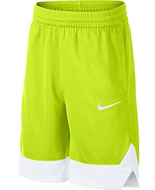 Big Boys Colorblocked Shorts