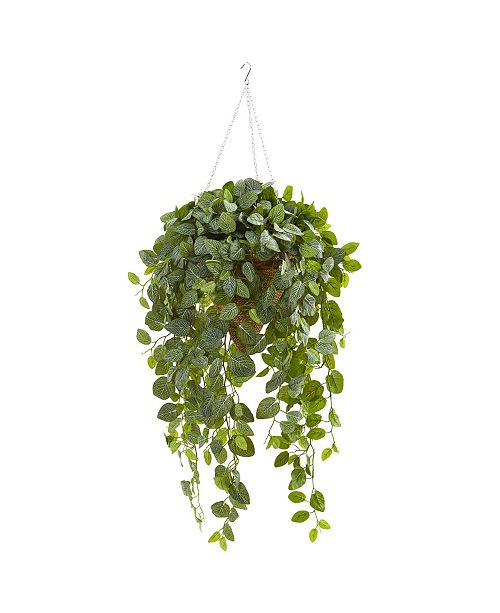 Nearly Natural Fittonia Artificial Plant in Hanging Cone Basket (Real Touch)