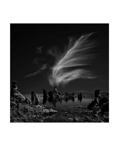 "Trademark Global Yvette Depaepe 'Mono Lakes Tufa Cathedral' Canvas Art - 35"" x 35"" x 2"""