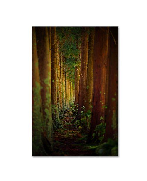 "Trademark Global Rui Caria 'Forest' Canvas Art - 19"" x 12"" x 2"""