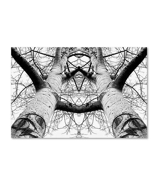 "Trademark Global James K Papp 'Aspen Cathedral' Canvas Art - 19"" x 12"" x 2"""