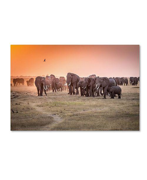 "Trademark Global Jeffrey C Sink 'Amboseli Morning Stroll To Starbucks' Canvas Art - 24"" x 16"" x 2"""