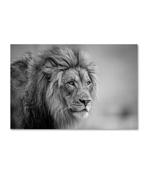 "Trademark Global Jeffrey C Sink 'His Majesty' Canvas Art - 24"" x 16"" x 2"""