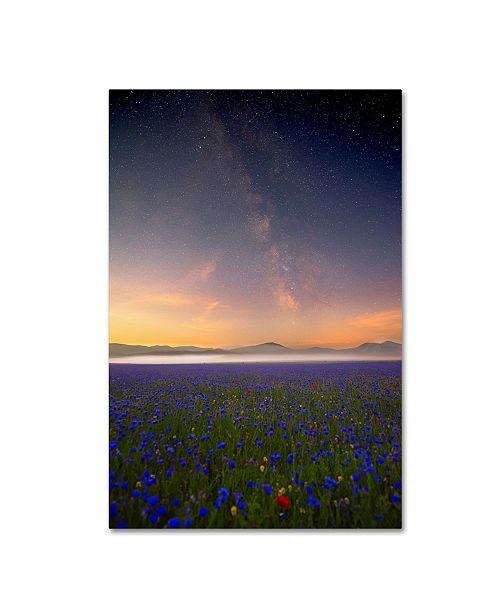 "Trademark Global Roberto Marchegiani 'Night Flowers' Canvas Art - 32"" x 22"" x 2"""