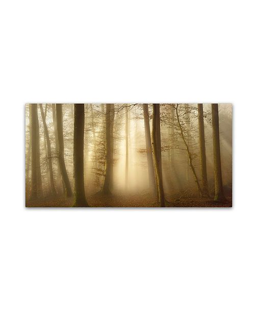 """Trademark Innovations Norbert Maier 'Into The Trees' Canvas Art - 10"""" x 19"""" x 2"""""""