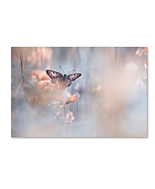 """Fabien Bravin 'Dakinis Are Watching Over Us' Canvas Art - 32"""" x 22"""" x 2"""""""