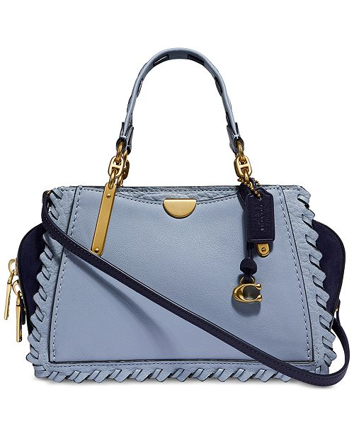 COACH Whipstitch Colorblocked Leather Dreamer 21 Crossbody