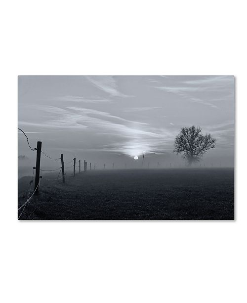 """Trademark Global Jacob Tuinenga 'On A Misty Morning In March' Canvas Art - 32"""" x 22"""" x 2"""""""