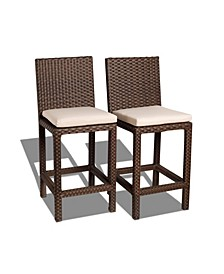 2 Piece Patio Barstool Set with Cushions