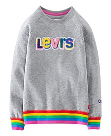 x Crayola Toddler Girls Rainbow Rib Chenille Logo Sweatshirt