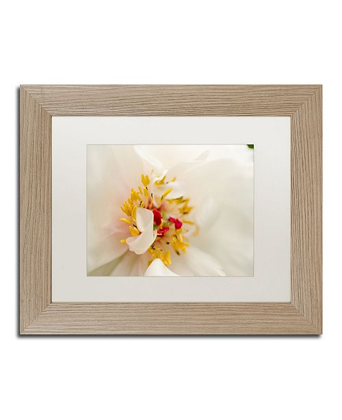 "Trademark Global PIPA Fine Art 'Eye of Peony' Matted Framed Art - 11"" x 14"""