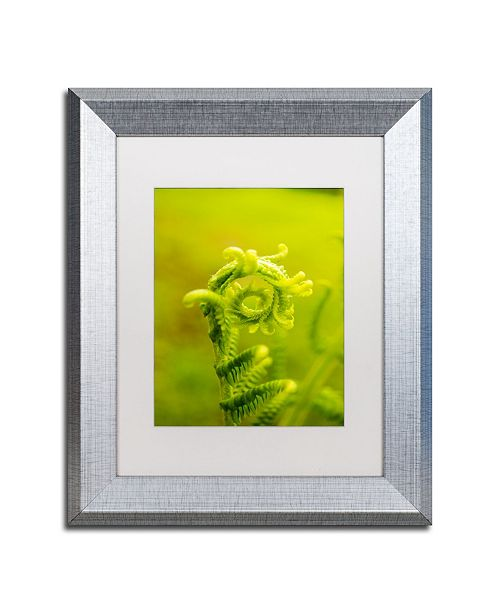 """Trademark Global PIPA Fine Art 'Nature's Perfection' Matted Framed Art - 11"""" x 14"""""""