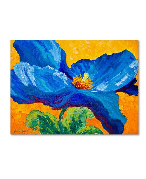 "Trademark Global Marion Rose 'Blue Poppy 2' Canvas Art - 14"" x 19"""