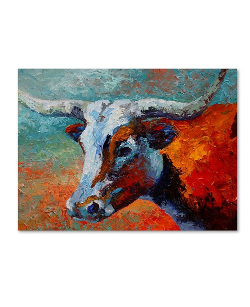 "Trademark Global Marion Rose 'Young Longhorn' Canvas Art - 14"" x 19"""