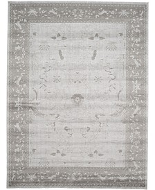 Bridgeport Home Aldrose Ald4 Light Gray 9' x 12' Area Rug