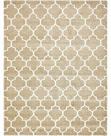 Bridgeport Home Fazil Shag Faz4 Taupe 9' x 12' Area Rug