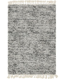 Lochcort Shag Loc3 Gray 4' x 6' Area Rug