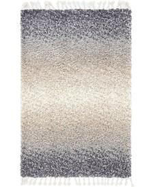 Lochcort Shag Loc5 Gray 4' x 6' Area Rug