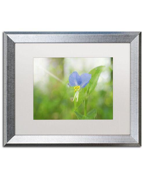"""Trademark Global PIPA Fine Art 'Asiatic Dayflower' Matted Framed Art - 16"""" x 20"""""""