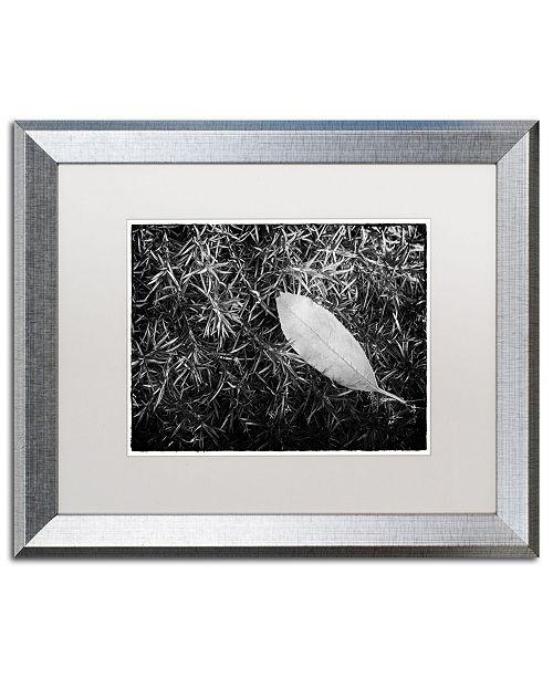 "Trademark Global PIPA Fine Art 'Leaf in Phlox' Matted Framed Art - 16"" x 20"""