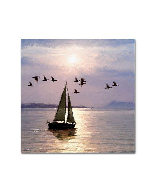 "Trademark Global The Macneil Studio 'Moonlight Sails' Canvas Art - 18"" x 18"""