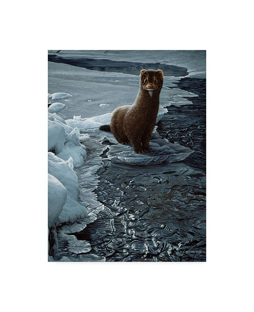 "Trademark Global Ron Parker 'Icy Creek Mink' Canvas Art - 18"" x 24"""