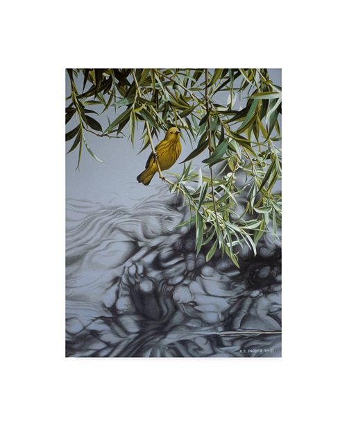 "Trademark Global Ron Parker 'Willow' Canvas Art - 18"" x 24"""