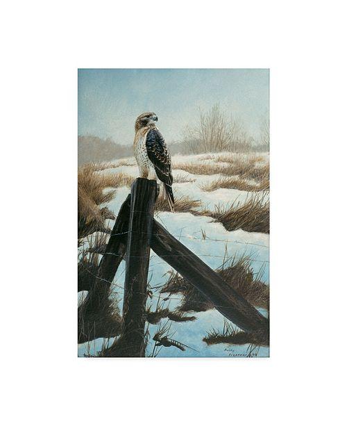 """Trademark Global Rusty Frentner 'Hawk Eye' Canvas Art - 16"""" x 24"""""""