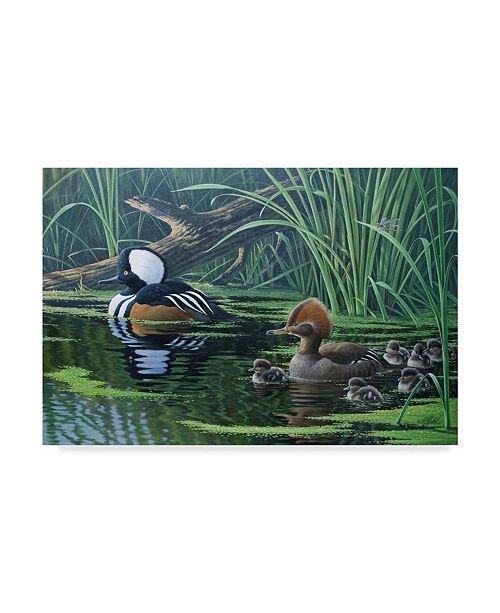 "Trademark Global Wilhelm Goebel 'Merganser' Canvas Art - 16"" x 24"""