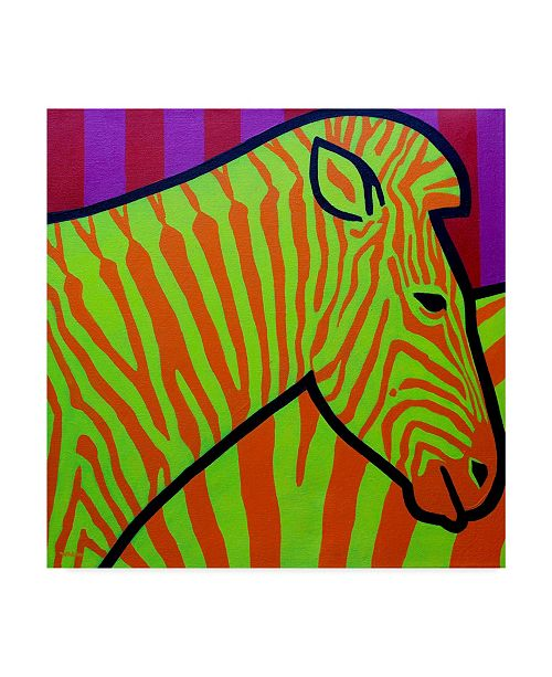 "Trademark Global John Nolan 'Cadmium Zebra' Canvas Art - 18"" x 18"""