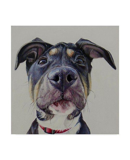 "Trademark Global James Ruby 'Hank' Canvas Art - 14"" x 14"""