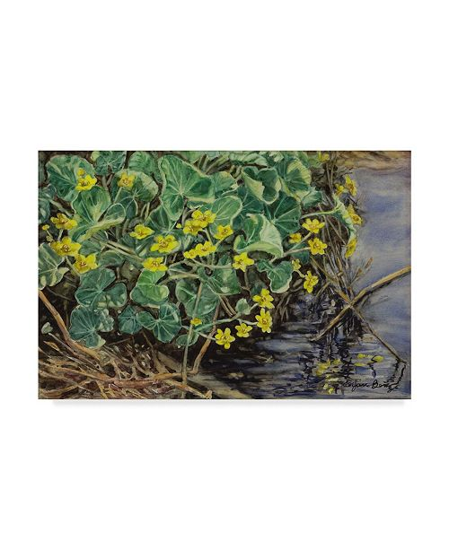 "Trademark Global Jan Benz 'Marsh Marigolds' Canvas Art - 24"" x 16"""