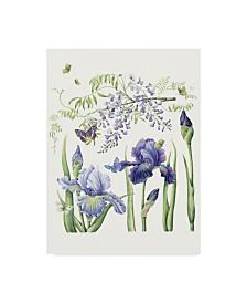 "Janneke Brinkman-Salentijn 'Iris & Wisteria' Canvas Art - 14"" x 19"""