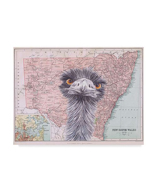 "Trademark Global Jane Wilson 'Emu Map' Canvas Art - 19"" x 14"""