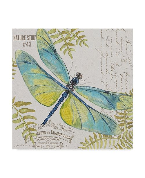 "Trademark Global Jean Plout 'Botanical Dragonfly 2' Canvas Art - 14"" x 14"""