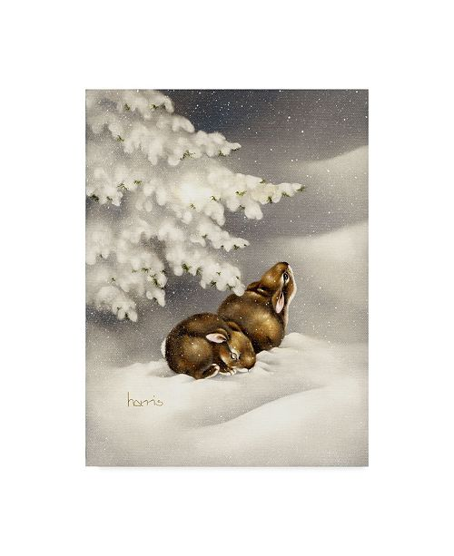 "Trademark Global Peggy Harris 'Peace On Earth Rabbit' Canvas Art - 18"" x 24"""