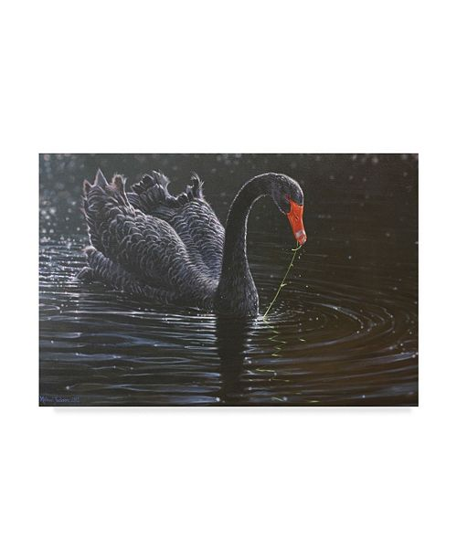 "Trademark Global Michael Jackson 'Black Swan In Water' Canvas Art - 19"" x 12"""