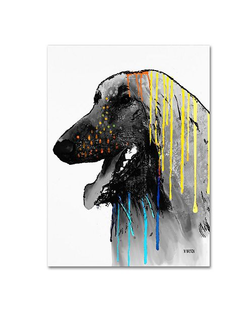 """Trademark Global Marlene Watson 'Afghan Hound' Canvas Art - 18"""" x 24"""""""