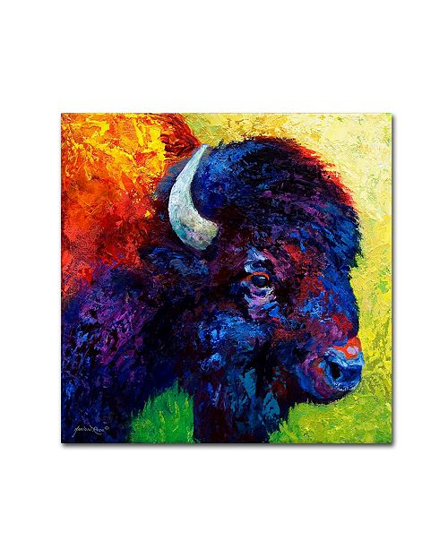 "Trademark Global Marion Rose 'Bison Head III' Canvas Art - 24"" x 24"""