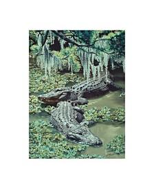 """D. Rusty Rust 'Alligators' Canvas Art - 24"""" x 32"""""""