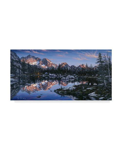 """Trademark Global Jeff Tift 'The Visitor' Canvas Art - 24"""" x 47"""""""