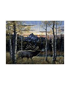 "Jeff Tift 'Dawn Of Light' Canvas Art - 24"" x 32"""